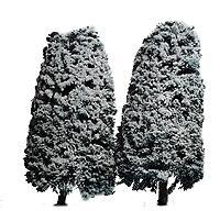 Accurate Dimensionals Snow-Covered Conifer Trees - 5'' (blue w/snow) -- Model Railroad Scenery -- #5020