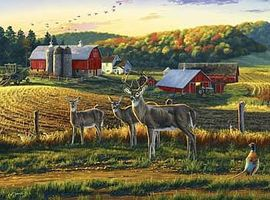 Buffalo-Games Darrell Bush Harvest Time 1000pcs Jigsaw Puzzle 600-1000 Piece #11238