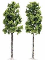 Busch Sycamore Trees - 6-1/2 16.5cm pkg(2) HO Scale Model Railroad Tree #6791