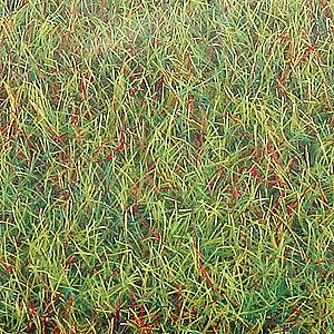 Busch Gmbh Spring 40 x 32'' -- Model Railroad Grass Mat -- #7221