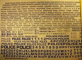 Chimney Generic Police or Special Units Decals Plastic Model Vehicle Decal 1/24 Scale #3036