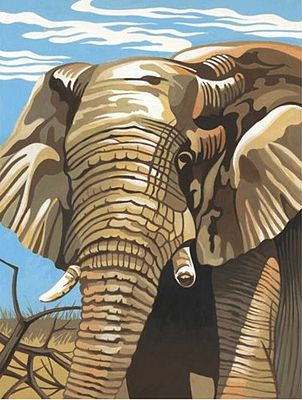Colart Elephant Acrylic Paint by Number 9''x12'' -- Paint By Number Kit -- #11013