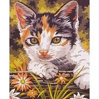 Colart Kitten Acrylic Paint by Number 9x12 Paint By Number Kit #12018