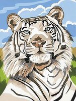 Colart White Tiger Acrylic Paint by Number 9x12 Paint By Number Kit #12068