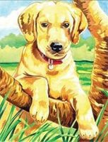 Colart Labrador Pencil by Number 10x12 Paint By Number Kit #12101