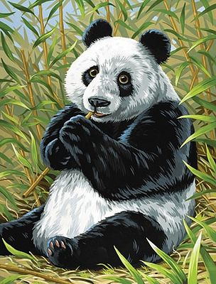 Colart Panda/Bamboo Acrylic Paint by Number 9''x12'' -- Paint By Number Kit -- #12192