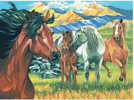 Colart Wild Horses Acrylic Paint by Number 11.5x15.5 Paint By Number Kit #13051