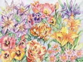 Colart Floral Montage Pencil by Number 11.5x15.5 Paint By Number Kit #51003
