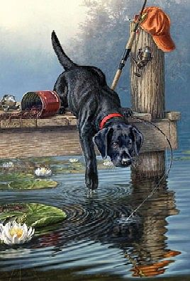 Colart Labrador Dog on Dock/Lake Acrylic Paint by Number 9''x12'' -- Paint By Number Kit -- #78024