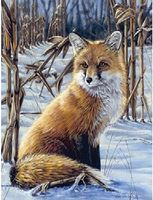 Colart Fox on Edge of Cornfield Acrylic Paint by Number 9x12 Paint By Number Kit #78027