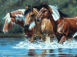 Colart Heading Upstream Horses in River Acrylic Paint by Number 12x16 Paint By Number Kit #78030