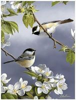 Colart Spring Chickadee Birds Acrylic Paint by Number 9x12 Paint By Number Kit #85008