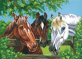 Colart Horses Acrylic Paint by Number 11.5x15.5