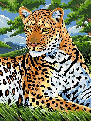 Colart Leopard Acrylic Paint by Number 9''x12''