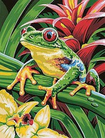 Colart Tree Frog Acrylic Paint by Number 9x12