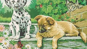 Colart Dog & Kittens Acrylic Paint by Number 9x12 (Replaces #91529)