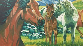 Colart Wild Horses Acrylic Paint by Number 11.5x15.5 (Replaces #13051)