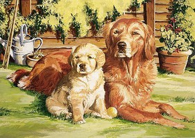 Colart Dogs Life (Retriever & Pup) Acrylic Paint by Number 11.5x15.5 (Replaces #85231)