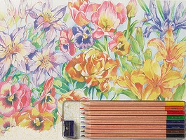 Colart Floral Montage Pencil by Number 11.5x15.5 (Replaces #51003)