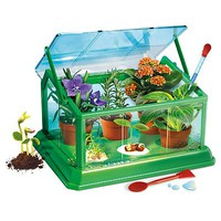 Creative My First Greenhouse