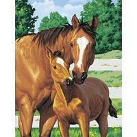Dimensions Mothers Pride (Horse with Foal) Paint By Number Kit #91100