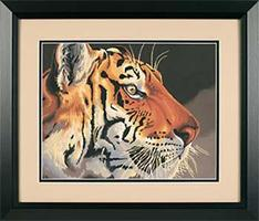 Dimensions Regal Tiger Paint By Number Kit #91323