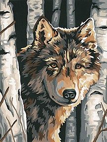 Dimensions Wolf among Birches -- Paint By Number Kit -- #91325