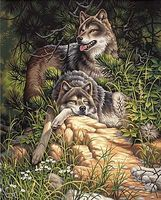Dimensions Wild & Free Wolves Paint By Number Kit #91416