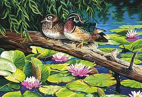 Dimensions The Lily Pond (Mallard Ducks) Paint By Number Kit #91467