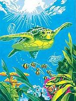 Dimensions Swimming Turtle Paint By Number Kit #91471
