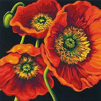 Dimensions Red Poppy Trio (Flowers) Paint By Number Kit #91527