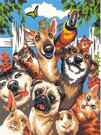 Dimensions Pet Animals Selfie (9x12) Paint By Number Kit #91679