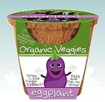 Dunecraft Grow Your Own Organic Eggplant Veggie Kit