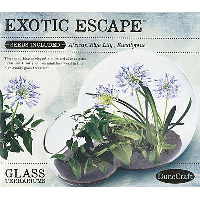 Exotic Escape