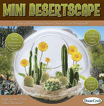 Dunecraft Glass Terrarium Mini Desertscape