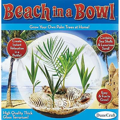 Dunecraft Beach In A Bowl