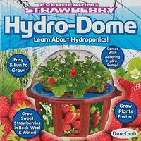 Dunecraft Everbearing Strawberry Hydro-Dome