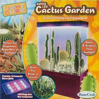 Dunecraft Light Cube Mini-Cactus Garden