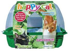 Dunecraft Happy Cat Sprout N Grow Catnip Kit