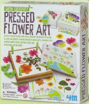4M Project Kits Pressed Flower Art Kit -- Activity Craft Kit -- #4565