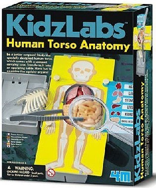 4M Project Kits Human Torso Body Science Kit