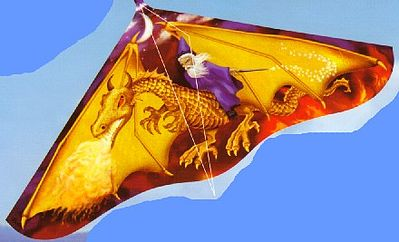 Gayla Industries 42''x22'' Dragon Wizard Delta Wing Kite -- Single-Line Kite -- #110
