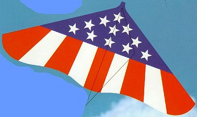 Gayla Industries 42''x22'' Spirit of America Delta Wing Kite -- Single-Line Kite -- #181