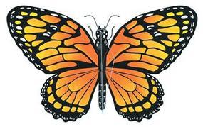 Gayla 43x26 Monarch Butterfly Wing Flapper Kite Single Line Kite #840