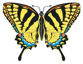 Gayla Industries 43''x32'' Tiger Swallowtail Butterfly Wing Flagger Kite -- Single-Line Kite -- #842