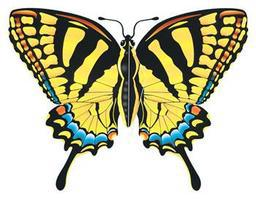 Gayla 43x32 Tiger Swallowtail Butterfly Wing Flagger Kite Single-Line Kite #842