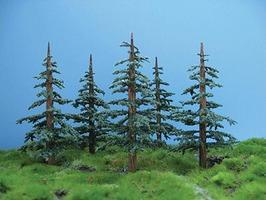 Grand-Central Lodgepole Pine Sml 8/ (8)