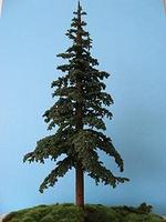 Grand-Central Lodgepole Pine X-Lrg  2/ (2)