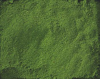 Hobbico Ground Cover- Green -- Mission Project Accessory -- #y9512