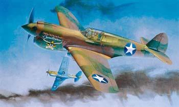 Hasegawa P40E Warhawk Texas Longhorn USAAF Fighter -- Plastic Model Airplane Kit -- 1/32 Scale -- #08879